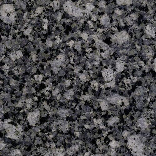 New Oyster Pearl Granite